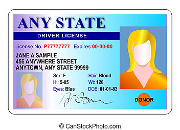 Illustration of female drivers license, blue and white background