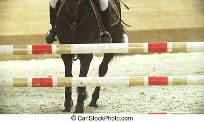 Female equestrian rider running on stallion at show jumping...
