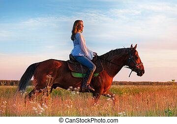 Female equestrian riding bay horse in a field