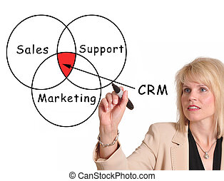 Customer Relationship Management - Female executive drawing...