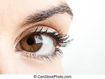 Female eye - Close-up portrait of a beautiful female eye