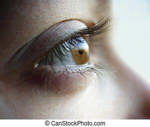 Female Eye - Female eye close-up. Macro-ring