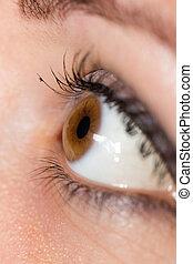 female eye, macro