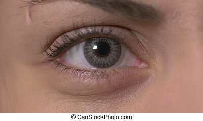 Female eye with contact lens