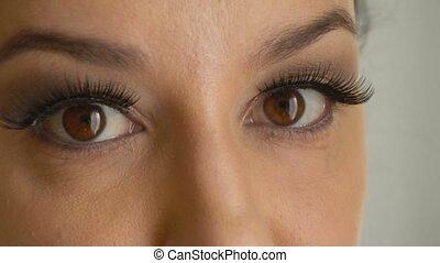 Female face with brown eyes and long false eyelashes looks...