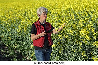 Female farmer examine blossoming rapeseed field
