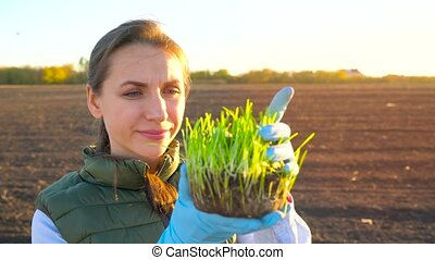 Female farmer examines a sample of seedlings before planting it in the soil