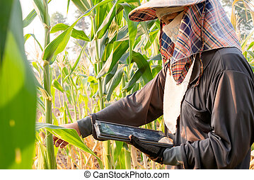Female farmer recording growth using technology