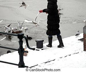Female feeding pigeons.