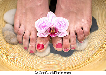 Female feet in spa bowl with sea salt, foot bath.