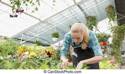 Female florist explores the fern at the garden centre