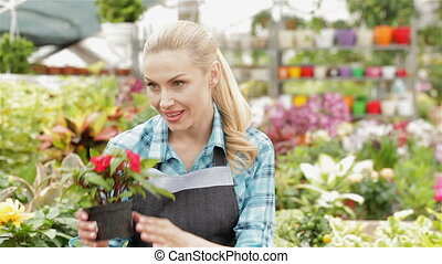 Female florist smells red and white flowers at the garden centre