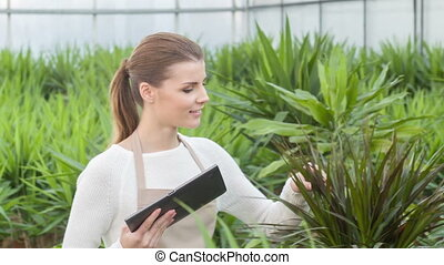 Female florist stops and checks growing plant.