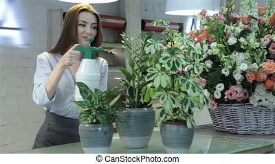 Female florist watering plants at flower shop