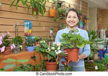 Female florist with primula flower at flower store