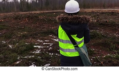 Female forestry employee in destroyed forest in snowy winter...