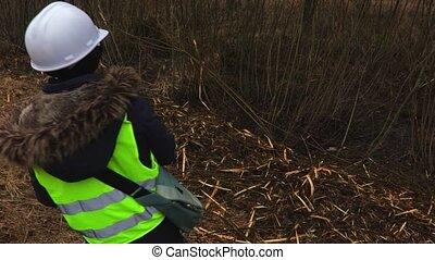 Female forestry inspector on slope near felling bushes