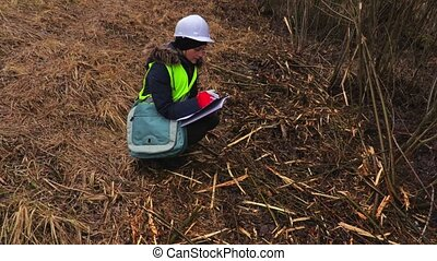 Female forestry inspector writing near felling bushes