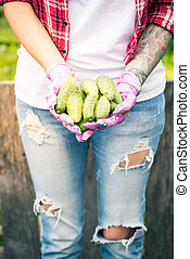 Female gardener or farmer holding fresh cucumbers in hands