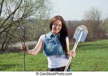 Female gardener planting tree outdoor in spring
