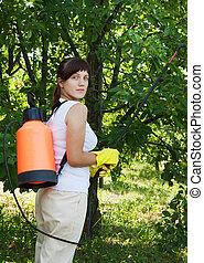 Female gardener spraying apple trees