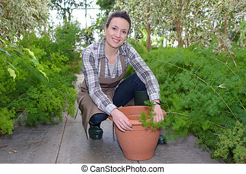 female gardener taking care of plants