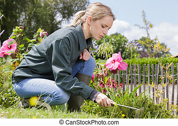 female gardener weeding flower beds