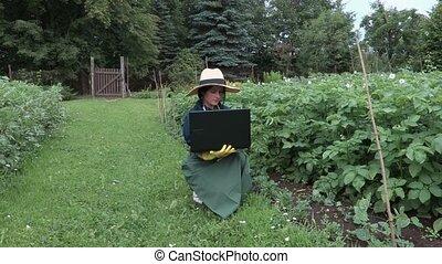 Female gardener with laptop near potatoes plants