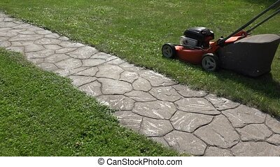 female gardener woman push mower cut grass near stone cobbled path.