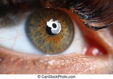 Female green-brown eye close up.