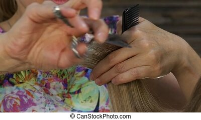 Female hairdresser hold in hand between fingers lock of...