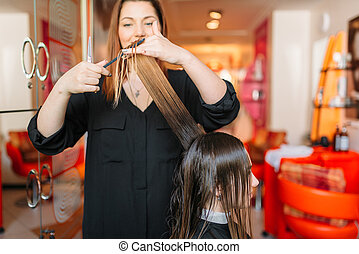 Female hairstylist runs the comb, hairdressing