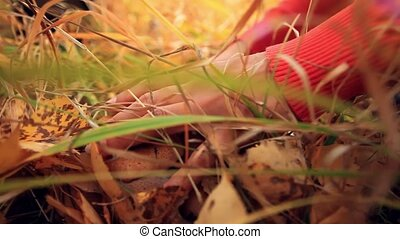Female Hand cutting a wild mushroom with a knife in the woods