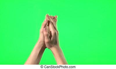 Female hand gestures - green screen