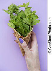Female hand hold waffle sweet ice cream cone with mint over purple background, top view. From above.