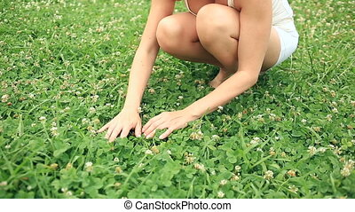 Female hand holding clover leaf, closeup. Beautiful girl with a deep neckline and lush breasts looking for four-leaf clover on the field.