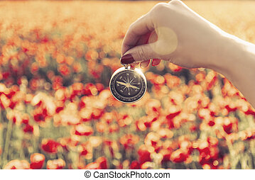 Female hand holding compass in front of poppy field.