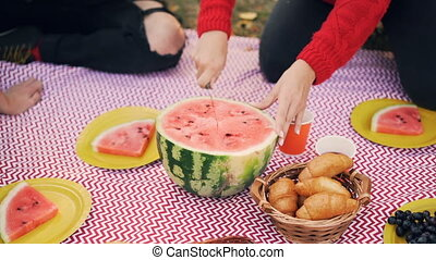 Female hand holding knife and cutting juicy watermelon...