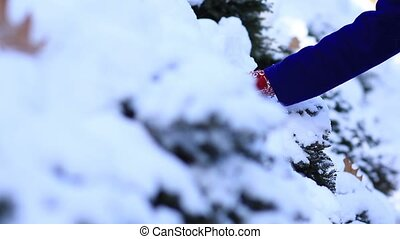 Female hand in mittens sliding on snowy trees - Closeup of...