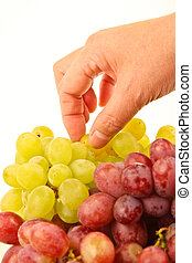 Female hand picking fresh grapes