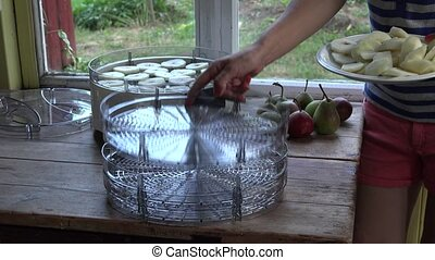 female hand put fresh pear fruit slices on dryer trays. 4K -...