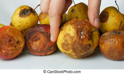 Female hand takes a rotten, spoiled, ripened apple and puts...