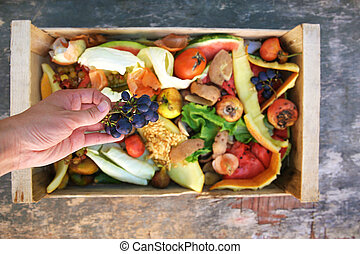 Female hand throws trash. Garbage sorting. Domestic waste for compost from fruits and vegetables.
