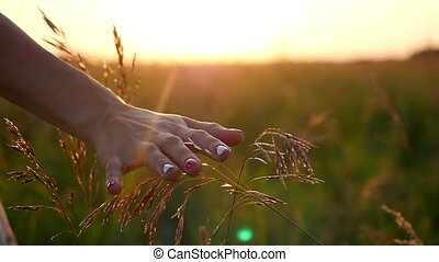 Female hand touching grass and young woman enjoying nature and sunlight in straw field