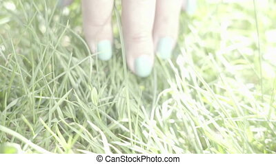 female hand touching green grass springtime activities,...