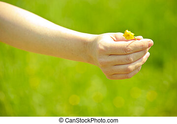 hand with flower