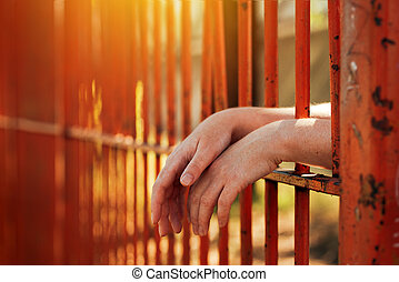 Female hands behind prison yard bars, incarcerated ...