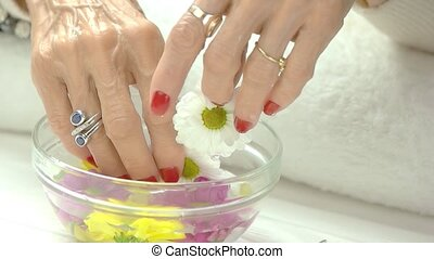 Female hands, glass bowl, chrysanthemums. Aged woman hands...