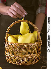 Female hands hold a basket with pears