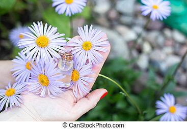 Female hands holding a bottle of blue chamomile essential oil, background, cosmetology and aromatherapy